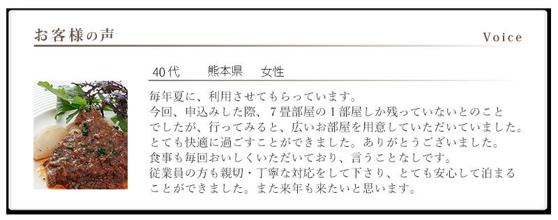 voice-09